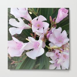 Pink Pastel Tropical Island Flowers Metal Print