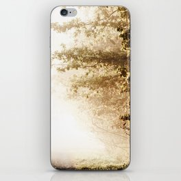Pathes iPhone Skin