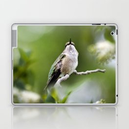 Elegant Hummingbird Laptop & iPad Skin