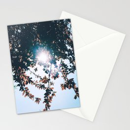 A PRETTY DAY IN MAY Stationery Cards