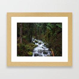 Multnomah Creek Framed Art Print