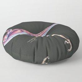 Microraptor Gui Muscle tudy (No Labels) Floor Pillow