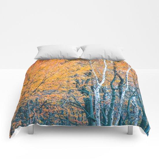 In Memory Comforters