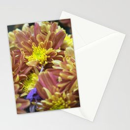Longwood Gardens Autumn Series 288 Stationery Cards
