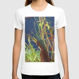 Green Heron Portrait T-shirt