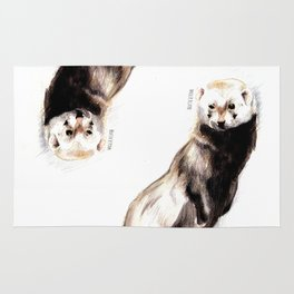 Steppen ferret (Mustela eversmanii) Rug