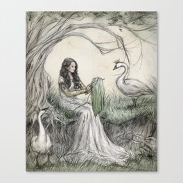 The Wild Swans Canvas Print