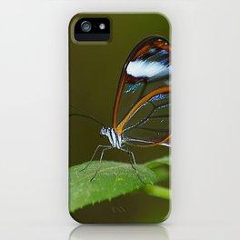 Glasswing Butterfly iPhone Case