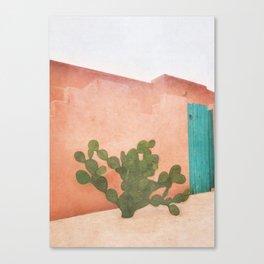Strong Desert Cactus Canvas Print