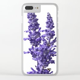 blue sage flour in bloom in spring Clear iPhone Case