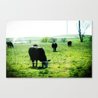 wisconsin Canvas Prints featuring Wisconsin by Tumbling Sparrow