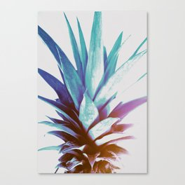 Tropical Top Canvas Print