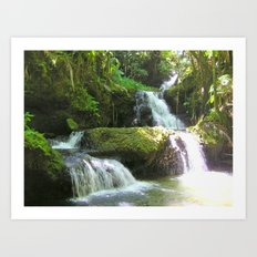 Tropical Waterfall Art Print