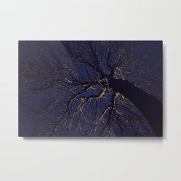 Tree at Night Metal Print