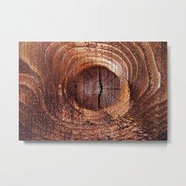 Wood 1822 Metal Print