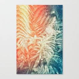 Fern and Fireweed 02 - Retro Canvas Print