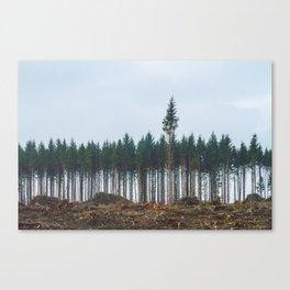 individualize  Canvas Print