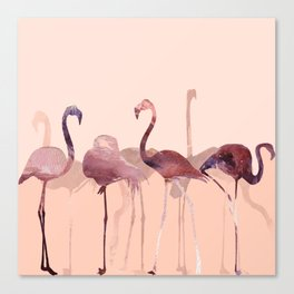 Summer Flamingos Canvas Print