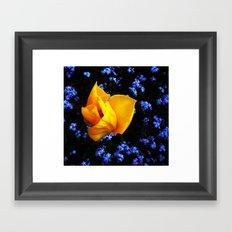 Flower Days Framed Art Print