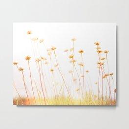 Beach Flora Metal Print