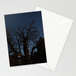 Moon brings life to an old tree Stationery Cards
