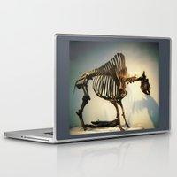 buffalo Laptop & iPad Skins featuring Buffalo by Mandy Chesnut