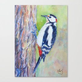 Watercolor great spotted woodpecker Canvas Print