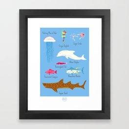 The Life Aquatic Fish Chart Framed Art Print