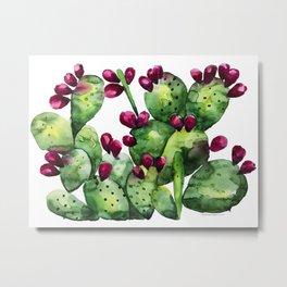 Prickly, Prickly Pear Metal Print
