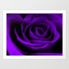 A Purple Rose Art Print