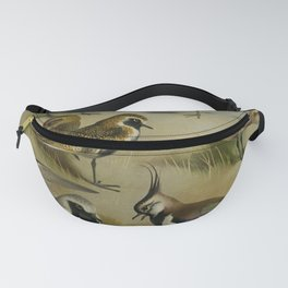 Vintage Print - Plovers, from Thorburn's British Birds (1915) Fanny Pack