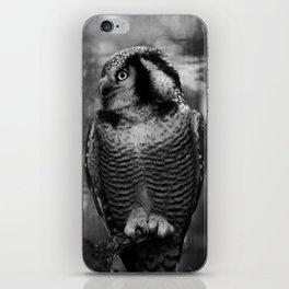 Owl series no.1 iPhone Skin