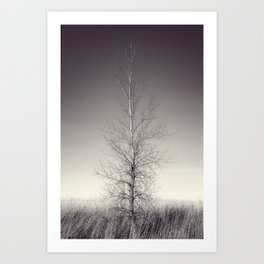 THE LAST TREE  (magenta) Art Print
