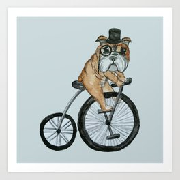 English Bulldog Riding a Penny-farthing Art Print