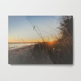 sunset through the grass on the beach Metal Print