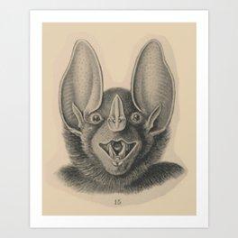 Vintage Happy Bat Art Print