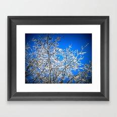 White Branches, Blue Sky Framed Art Print