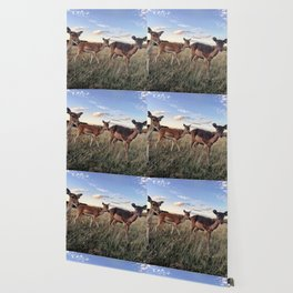 Dear Deer Wallpaper