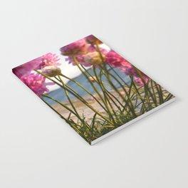 Armeria Maritima Notebook
