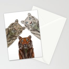 Triple Tigers Stationery Cards