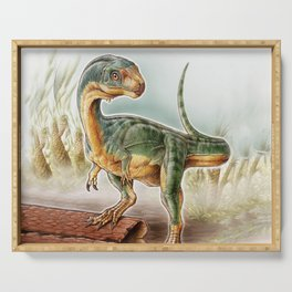 Lost dinosaur Serving Tray