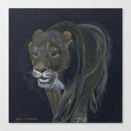 Lion female walking Canvas Print