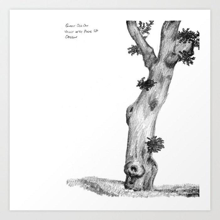 Gnarly Oak Tree Art Print