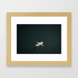 Soaring over the ocean Framed Art Print