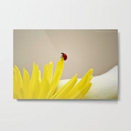red ladybug Metal Print