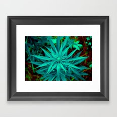 Twisted Frosty Weed Framed Art Print