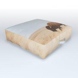 American Icon II Outdoor Floor Cushion