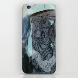 Waterfall Village iPhone Skin
