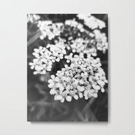 Monochrome Flower Metal Print