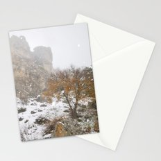 Into the snowstorm.... Stationery Cards